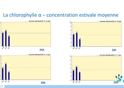 chlorophylle-2