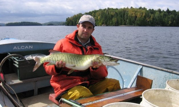 Pêche expérimentale