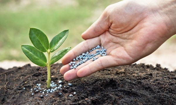 Pesticides, herbicides et engrais