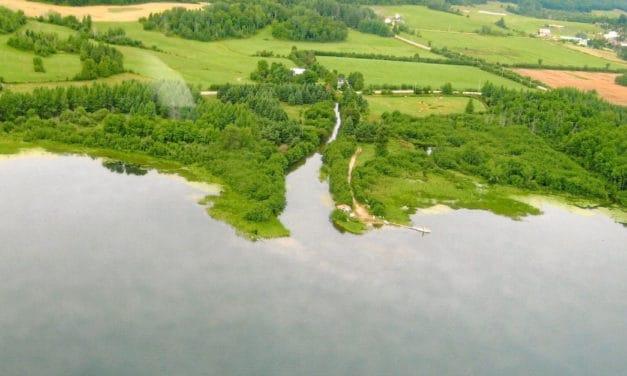Restauration des ruisseaux