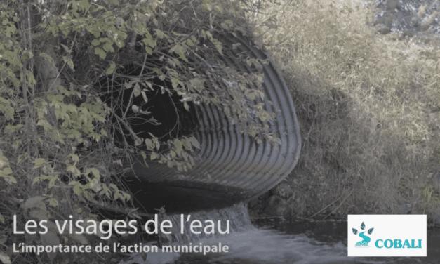 L'importance de l'action municipale