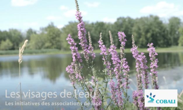Les initiatives des associations de lacs